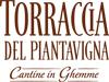 Torraccia-di-Piantavigna